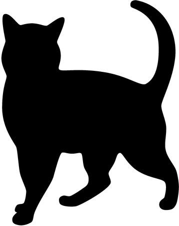 silueta gato: Silueta de gato negro