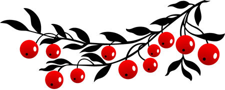 black berry: red Cranberry, Isolated. Illustration
