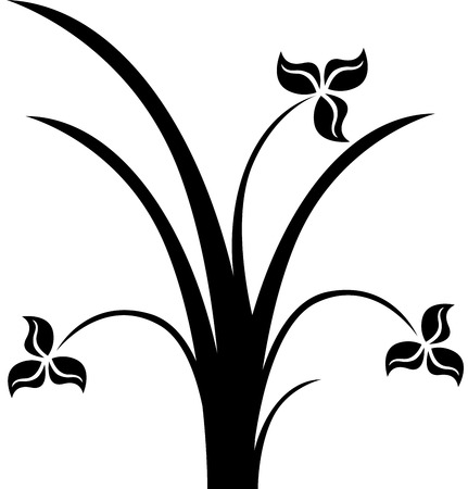 vectorial: Beautiful  image  flower silhouette, isolated