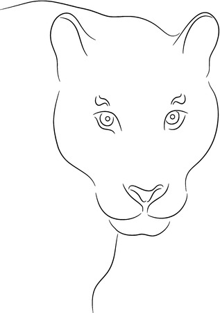 a lioness, isolated Vector