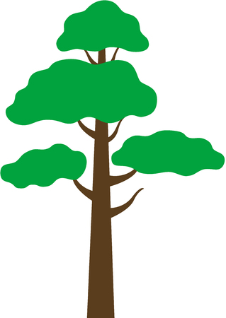 a Pine tree, isolated Banco de Imagens - 7296536