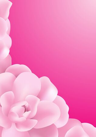 Pink Background made of pink roses flowers photo