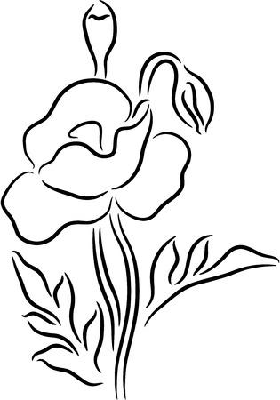 Black poppy flower contour, isolated. Vector illustration Stock Vector - 7336487