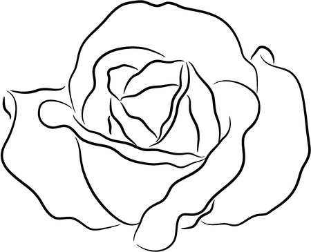 Rose contour, isolated.  Stock Vector - 7485459