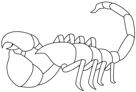 illustration of a white scorpion, isolated Stock Vector - 7485462