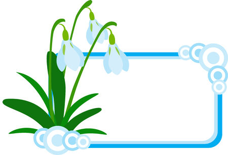Vector illustration of Snowdrop banner or logo, isolated Vector