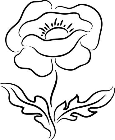 Zwarte papaver bloem contour, geïsoleerde illustratie