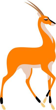 gazelle: illustration of graceful antelope, isolated. Illustration