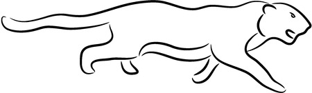 illustration of a lioness, isolated Vector