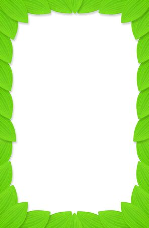 edges: Frame of green leaves with white background. Stock Photo