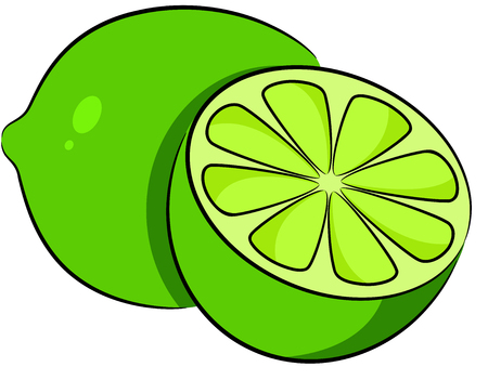 Illustration of a ripe green lime, isolated