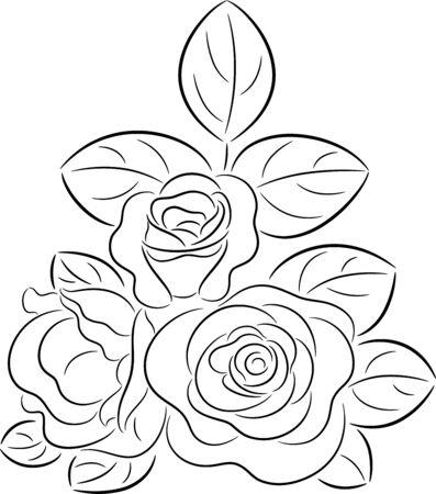 Rose contour Stock Vector - 8384633