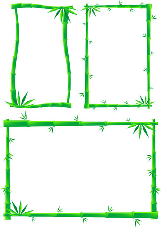 Vector illustration set of bamboo frames, isolated Illustration