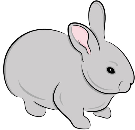 cartoon hare: Domestic rabbit, isolated. Cute animal  illustration.