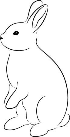 dessin au trait: Silhouette de lapin, isol�. Illustration animale mignonne.