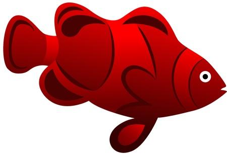 exotic fish: Ilustraci�n de un pez ex�tico de color rojo, aislado