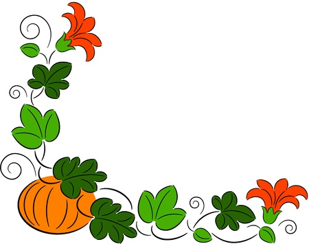 Illustration of ripe pumpkin with leaves and flowers, isolated Illustration