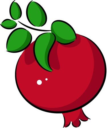 ailment: Illustration of ripe pomegranate fruit, isolated