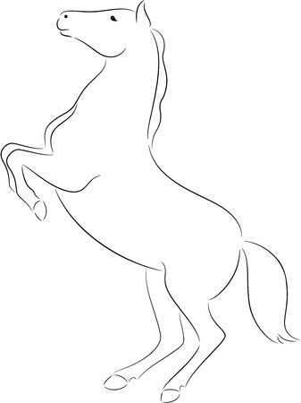 hoof: Illustration of a horse silhouette, isolated
