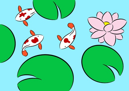 Koi carp fish swimming in lotus pond. Chinese brocaded carp.  Vector