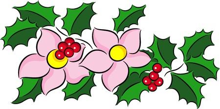 yule: Christmas bouquet made of Holly Border and flowers, isolated