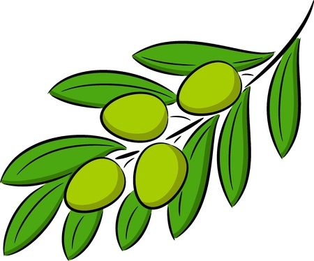 ailment: Illustration of green olive branch, isolated