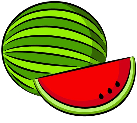 water melon: illustration of water melon fruit, isolated Illustration