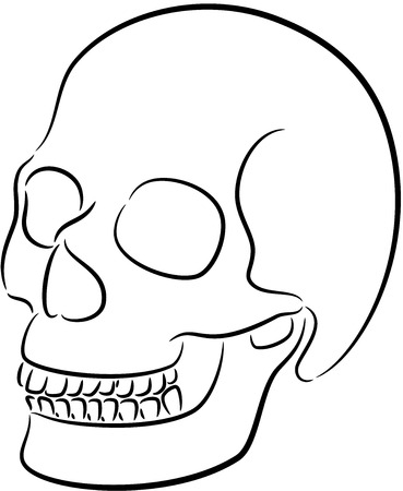 illustration of skull black silhouette, isolated Vector