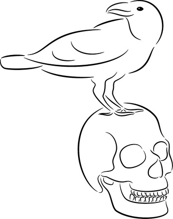 Raven sitting on skull, isolated Vector