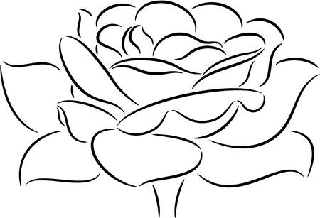 flor aislada: ilustraci�n con flor rosa aislado