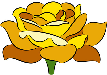 yellow roses: illustration with rose flower, isolated Illustration