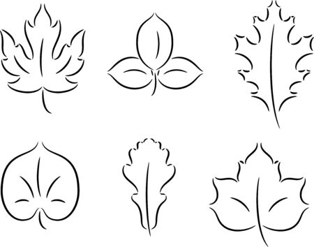 trees illustration: Set of different leaves, isolated