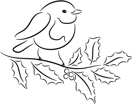 robin bird: Christmas Robin sitting on Holly branch, isolated Illustration