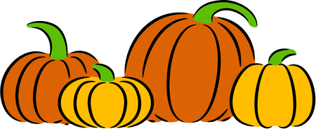 Vector illustration of big ripe pumpkins, isolated