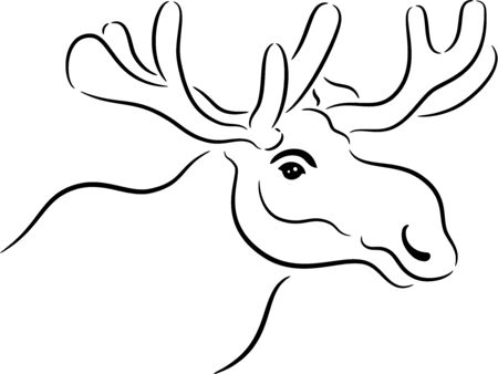 Vector illustration of a moose or elk head, isolated