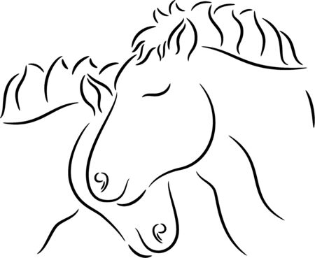 Illustration of horses in love, isolated