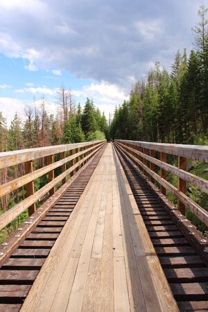 trestle: Trestle in the woods
