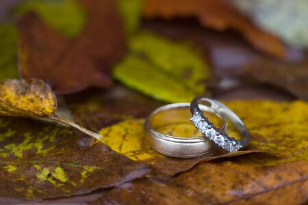 Autumn Wedding Rings 2
