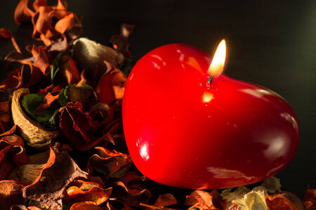 Candle in the form of heart and dry flowers photo