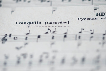 tempo: Musical tempo Tranquillo in a music book close up