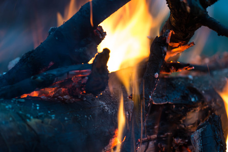 tranquillity: Bright flame of the burning bonfire close up