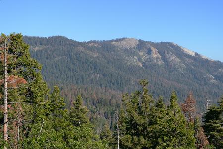 Sequoia National Park mountain landscape, California, USA Stock Photo