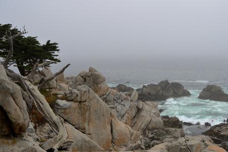 Coastline along the 17 Mile Drive in overcast day. California, USA
