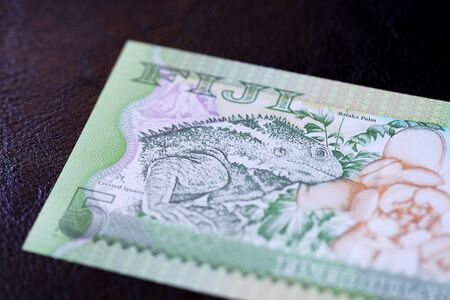 Five Fijian dollars banknote on a dark background close up
