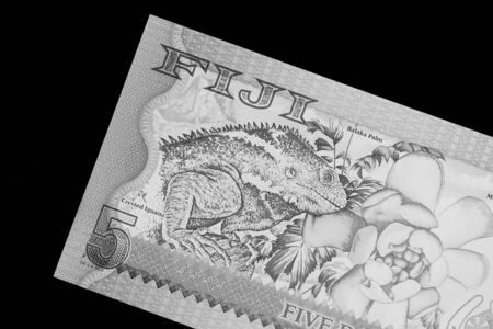 Five Fijian dollars banknote on a black background close up. Black and white