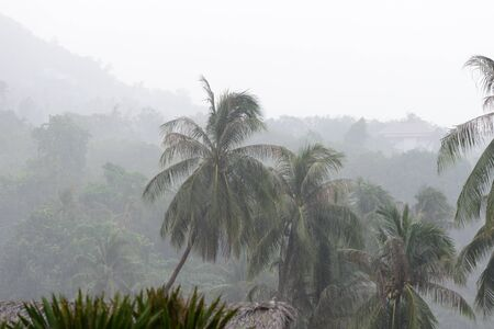 Heavy tropical rain on the coast of Koh Samui, Thailand