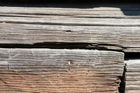 Old weathered log closeup in sunny day. Wooden background Фото со стока - 130124551