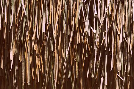 Palm roof  texture close up. Tropical background Banco de Imagens - 131286897