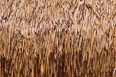 Palm roof texture close up. Retro style tropical background Banco de Imagens - 131300422