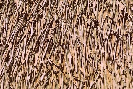 Palm roof texture close up. Retro style tropical background Banco de Imagens - 131301102